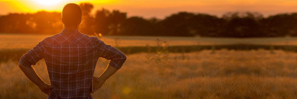Você está cansado de passar horas levando papéis para aprovar seu projeto agropecuário?